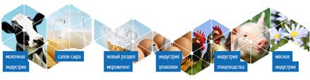 Молочная и Мясная индустрия 2013
