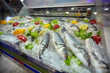 В Брюсселе рыбакам расскажут о перспективах освоения латиноамериканского рынка