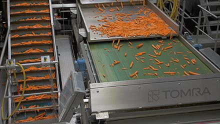 Компания Ardo модернизирует производственные мощности с помощью оптических сортировочных машин Sentinel II